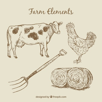 Hand drawn farm animals and elements