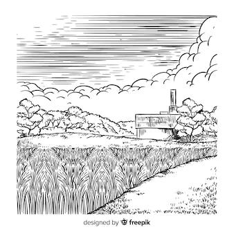 Paesaggio agricolo disegnato a mano