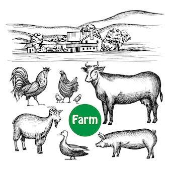 Hand Drawn Farm Set