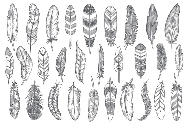 Hand drawn feather set