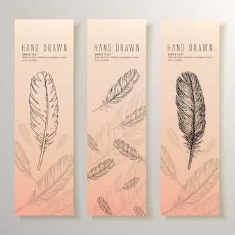 Hand drawn feathers banner