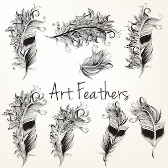 Hand drawn feathers collection