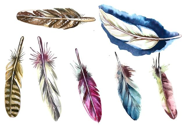 Ручной обращается перья акварель на белом фоне