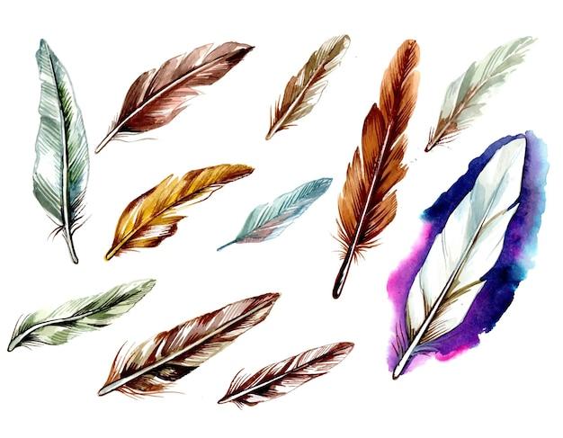 Acquerello di piume disegnate a mano impostato su superficie bianca