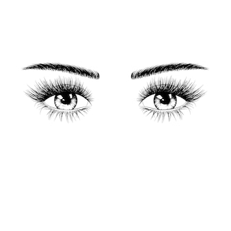 Hand drawn female eyes silhouette with eyelashes and eyebrows