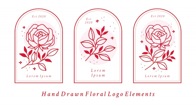 Hand drawn feminine beauty logo elements with pink rose flower and leaf branch for branding
