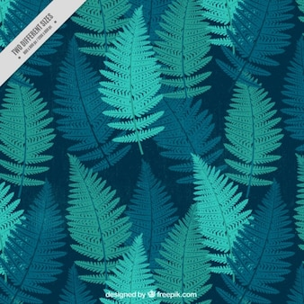 Hand drawn ferns background
