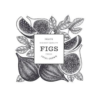 手描きイチジクフルーツデザインテンプレート。有機生鮮食品のイラスト。レトロなイチジクの果実。