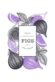 Шаблон оформления рисованной инжир фрукты
