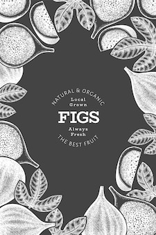 Hand drawn fig fruits label template