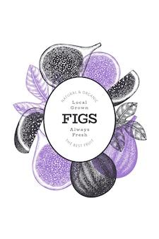 Ручной обращается шаблон плоды инжира. иллюстрация органических свежих продуктов. ретро плод инжира баннер.