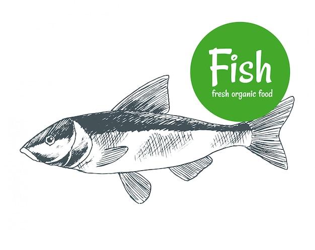 Ручной обращается рыба. плакат магазина рыбы и морепродуктов. морской промысел и океаническая рыбалка. можно использовать в качестве рыбного меню ресторана или баннера рыболовного клуба
