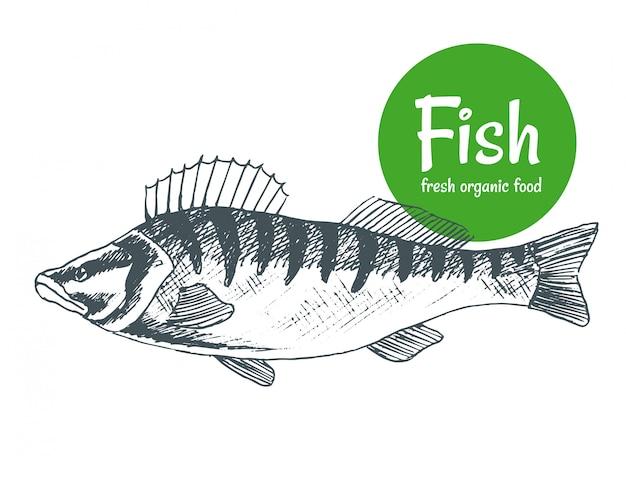 Ручной обращается рыба. плакат магазина рыбы и морепродуктов. морской промысел и океаническая рыбалка. можно использовать как рыбное меню ресторана или баннер рыбалки