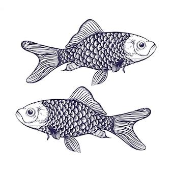 손으로 그린 물고기 그림