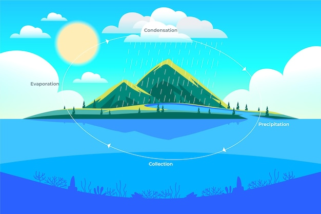 Disegnato a mano del ciclo dell'acqua dal design piatto