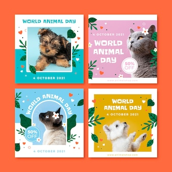 Hand drawn flat world animal day instagram posts collection with photo