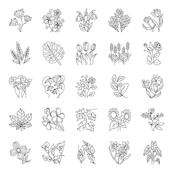 Hand drawn floral art pack