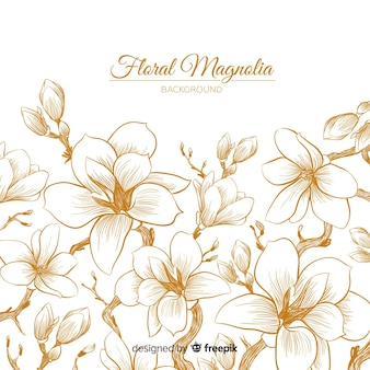 Magnolia Vectors Photos And Psd Files Free Download