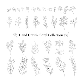 Hand drawn floral branches pack.