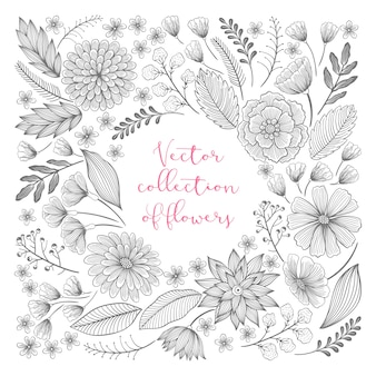 Hand drawn floral collection