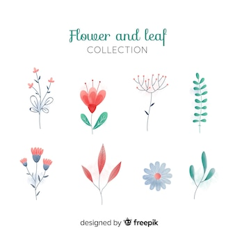 Hand drawn floral decoration element set