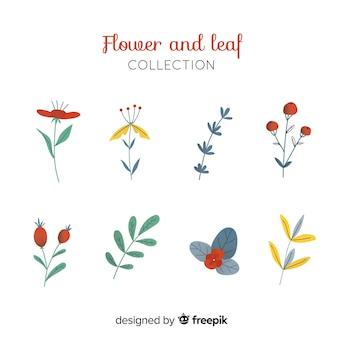 Hand drawn floral decoration element set
