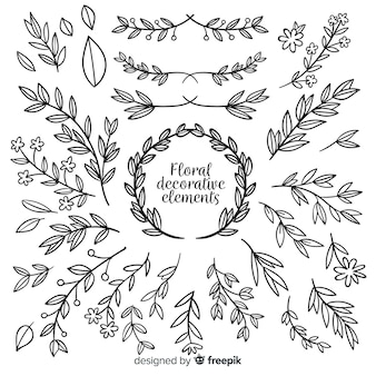Hand drawn floral decorative element collection