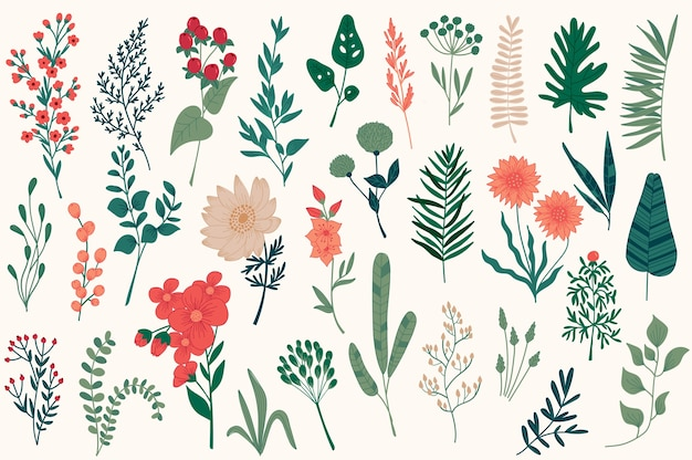 Набор рисованной цветочные декоративные элементы, листья, цветы, травы и ветви ботанических рисунков