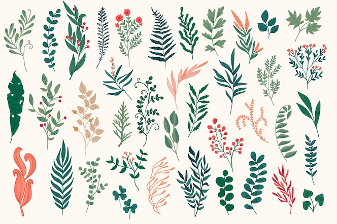 Hand drawn floral decorative elements, leaves, flowers, herbs and branches botanical doodles set