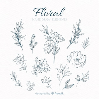 Hand drawn floral decorative elements