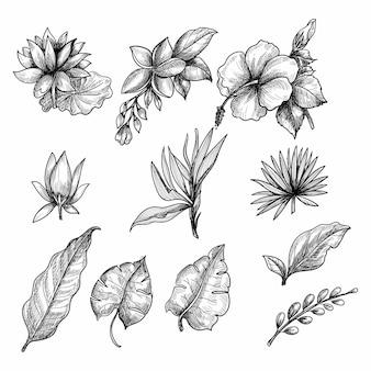 手描きの花の装飾的なセット要素
