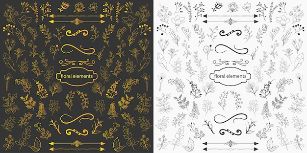 Hand drawn floral elements design vector