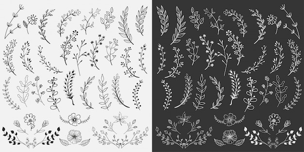 Hand drawn floral elements design