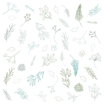 Hand drawn floral elements, line art leaves and branches, hand drawn