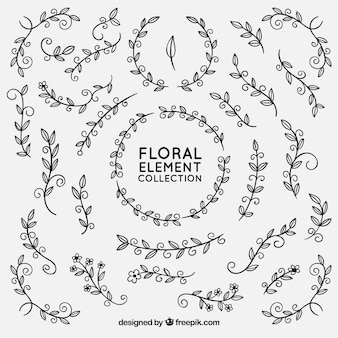 Elementi floreali disegnati a mano con stile abbozzato