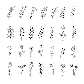 手描きの花の要素