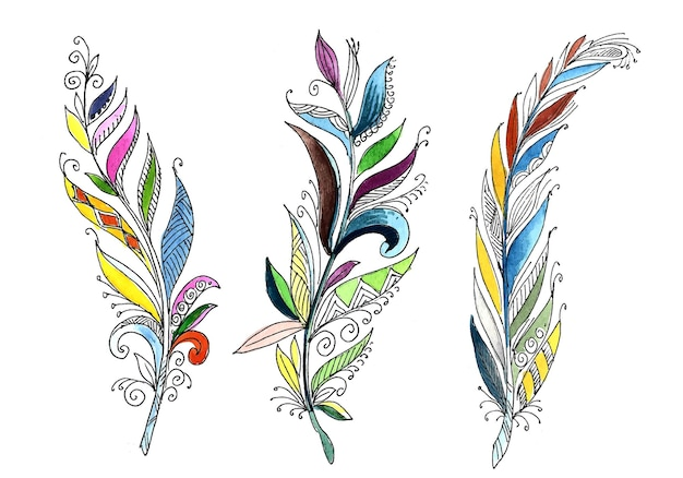 Acquerello di piume floreali disegnate a mano impostato su sfondo bianco