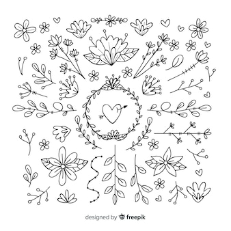 Hand drawn floral ornament collection