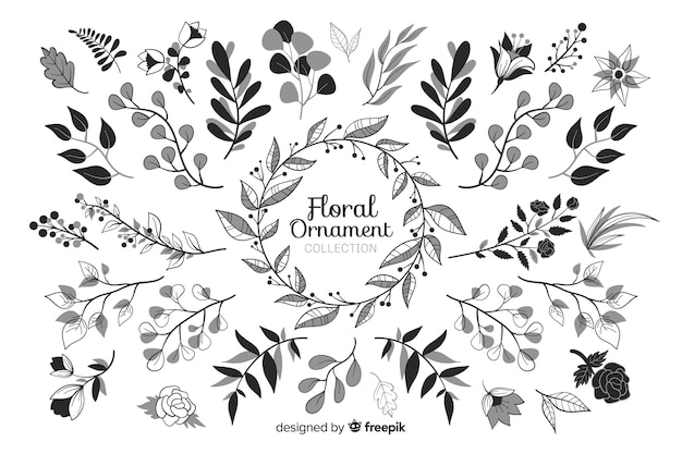 Hand drawn floral ornament set
