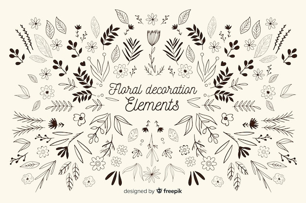 Hand drawn floral ornamental element pack