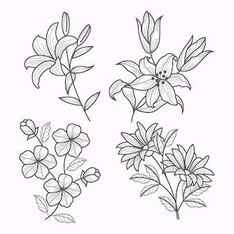 Collezione di fiori disegnati a mano