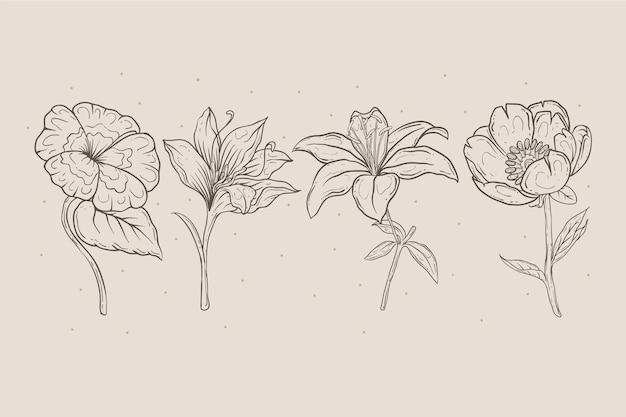 손으로 그린 된 꽃 모음