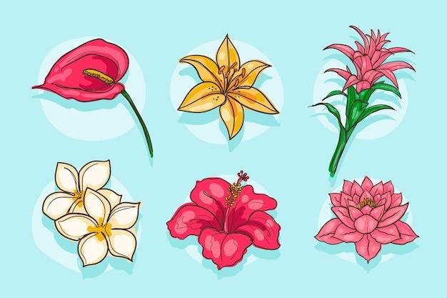 手描きの花コレクション
