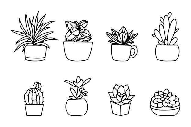 Рука нарисованные цветок в горшке, изолированные на белом фоне. векторный дизайн коллекции