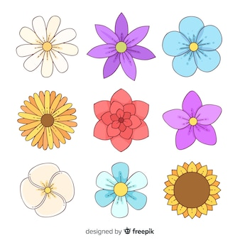 Hand drawn flower pack