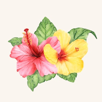 Hand drawn flower vector isolated