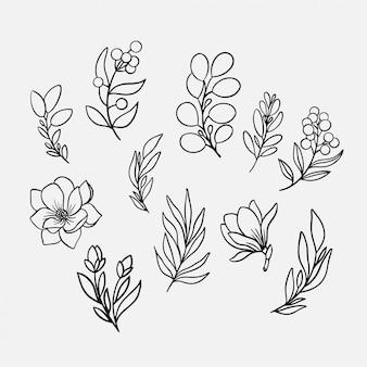 Нарисованная рукой иллюстрация собрания цветов и листьев