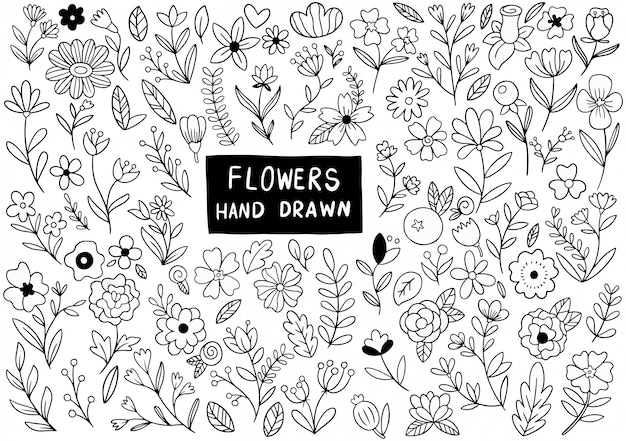 Hand drawn flowers doodle