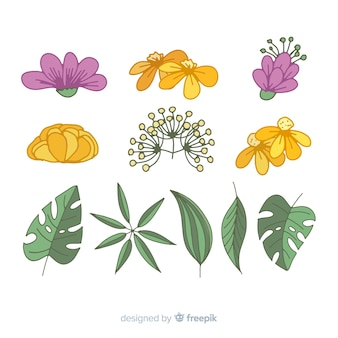 Hand drawn flowers and leaves