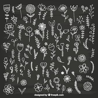 Ручной обращается цветы на доске